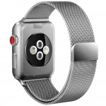 Tech-Protect MilaneseBand [Silver], Bransoleta do Apple Watch 1/2/3 (42mm)